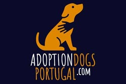 We are looking for masters with responsibility and love for abandoned dogs from Portugal